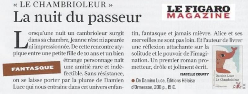 presse_figaro_magazine_chambrioleur_damien_luce
